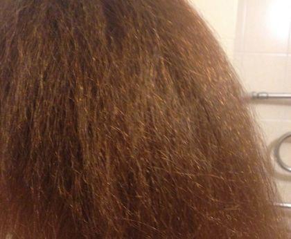 Реальность и мифы: убивает ли краска для волос вшей и гнид?