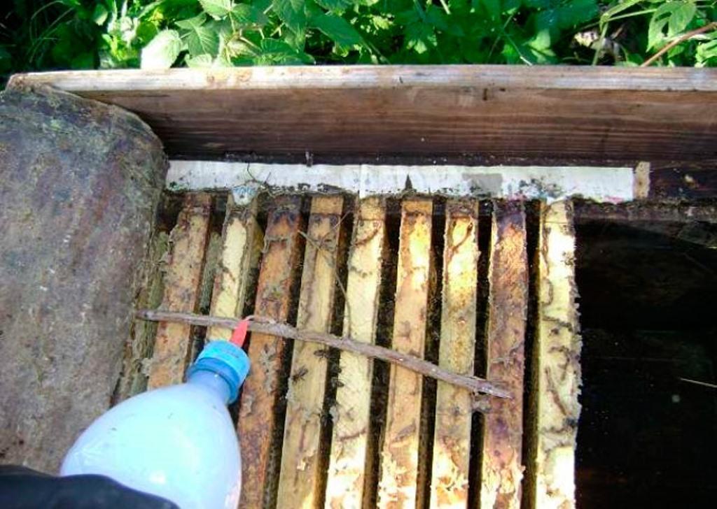 Бипин для пчел: инструкция по обработке осенью, видео