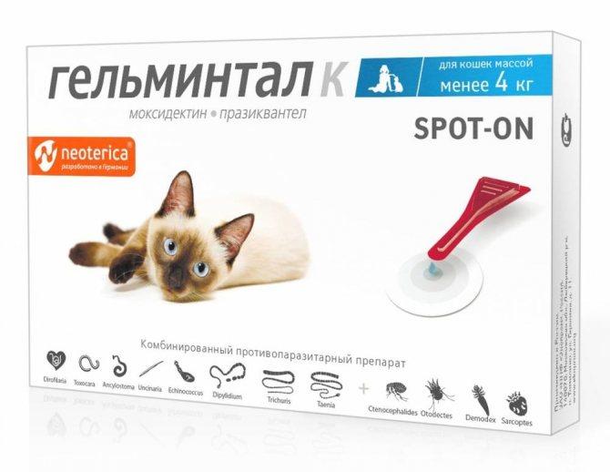 Гельминтал для собак: отзывы и инструкция по применению капель, сиропа, суспензии
