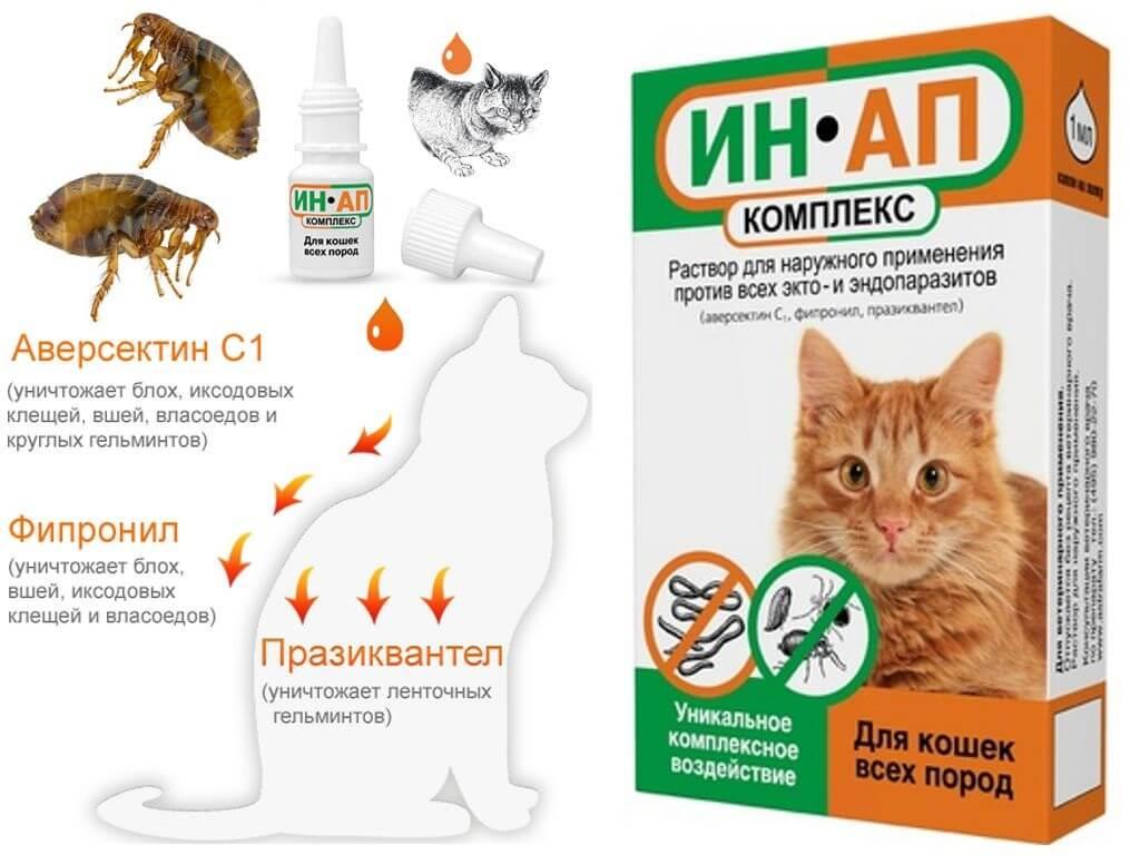 Капли на холку от блох и клещей для кошек