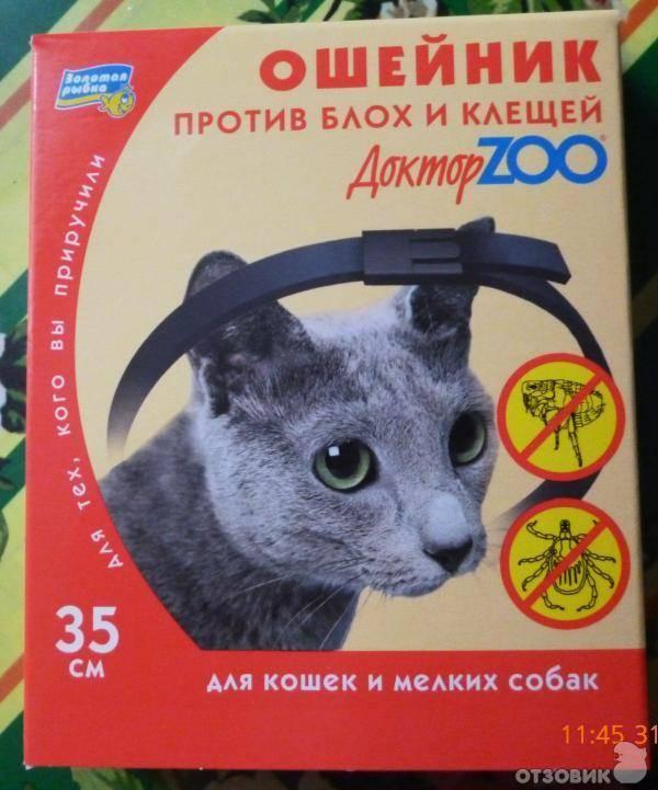 """Эффективен ли ошейник от блох для собак и котов, виды, как выбрать   блог ветклиники """"беланта"""""""