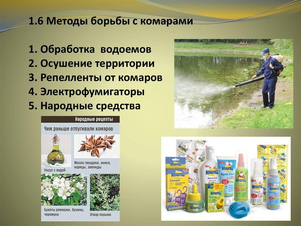 Народные средства от комаров - мужик в доме.ру