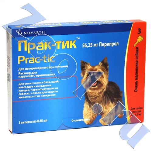 Капли «практик» от клещей для собак: состав, форма выпуска, назначение и применение, дозировка, аналоги
