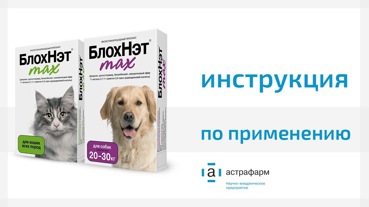 Блохнэт от блох для собак и кошек: капли и спрей, инструкция и отзывы покупателей