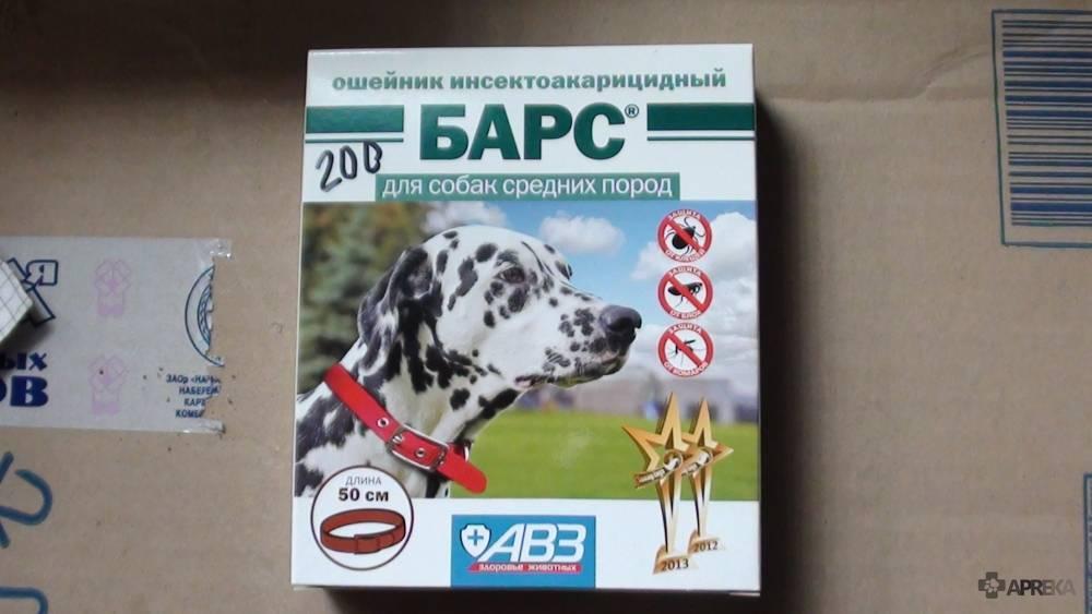 """""""барс"""" от клещей для собак и кошек: цена разных форм препарата, отзывы владельцев об их использовании"""