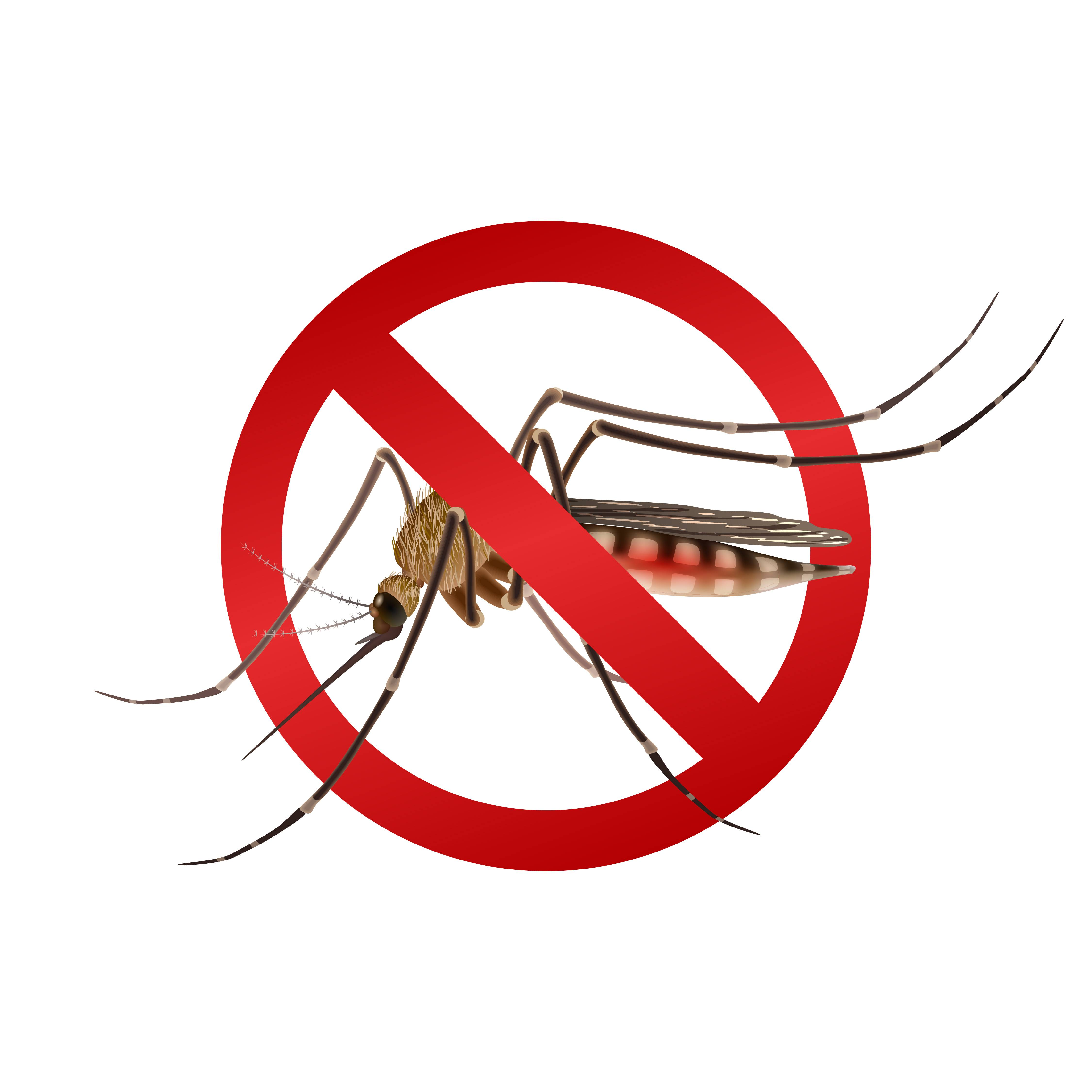 Сонник убивать комаров. к чему снится убивать комаров видеть во сне - сонник дома солнца