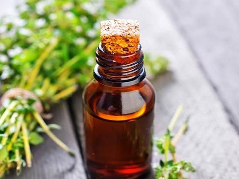 Эфирные масла от клопов в доме: эвкалиптовое, чайного дерева и другие эффективные, как применять