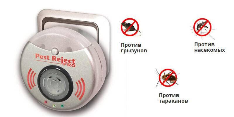 ❶ ультразвуковой отпугиватель от клопов: по отзывам выберем лучшее средство для применения