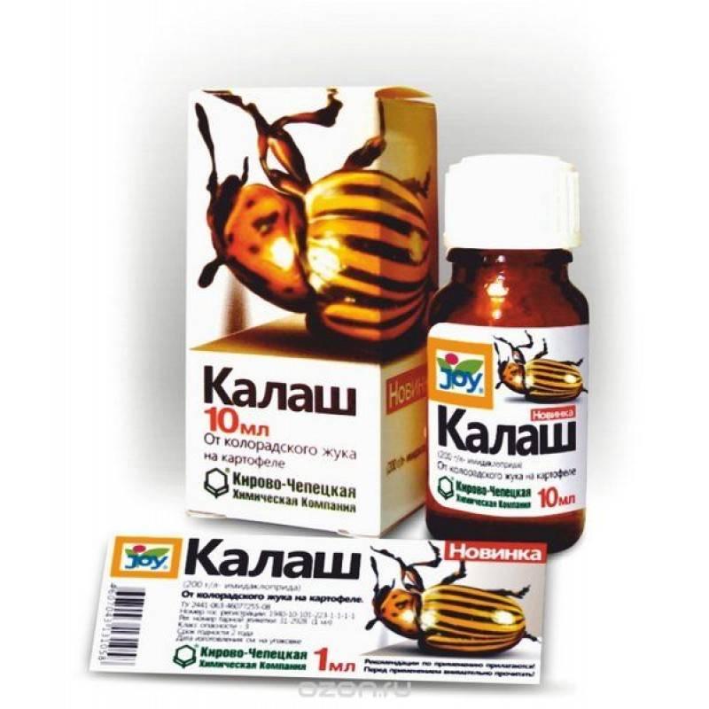 Самые лучшие средства от колорадского жука: препараты и народные средства