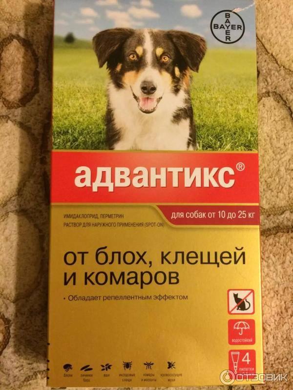 Адвантикс для собак