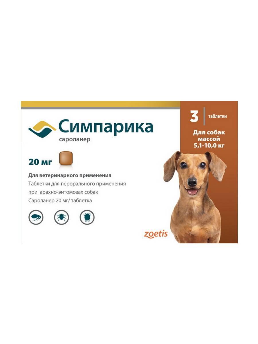 Эффективны ли таблетки от блох для собак в борьбе против паразитов? читайте!