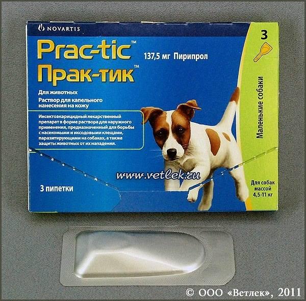 ❶ практик для собак - инструкция по применению, отзывы