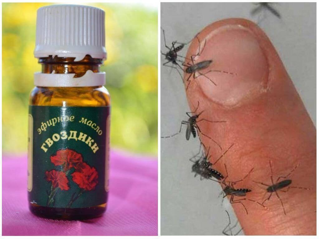 Помогает ли гвоздичное масло от комаров?