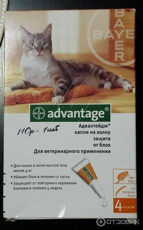 Адвантейдж — инструкция по применению для кошек, отзывы