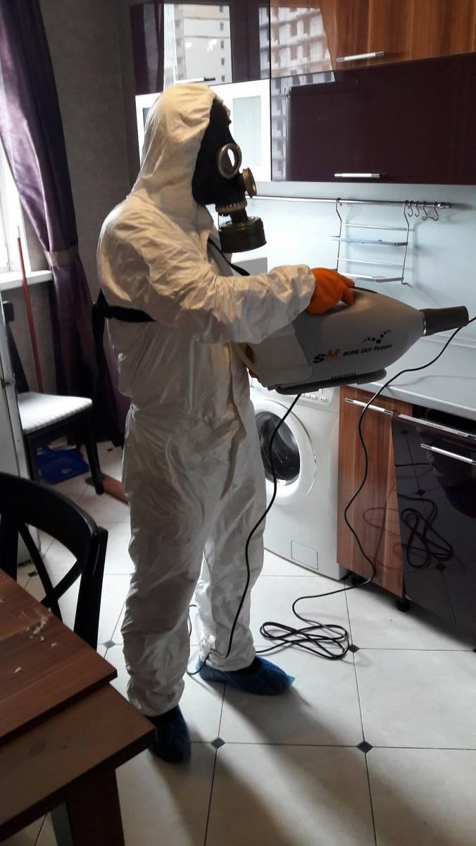 Горячий туман от тараканов: подробная информация и отзывы о методе
