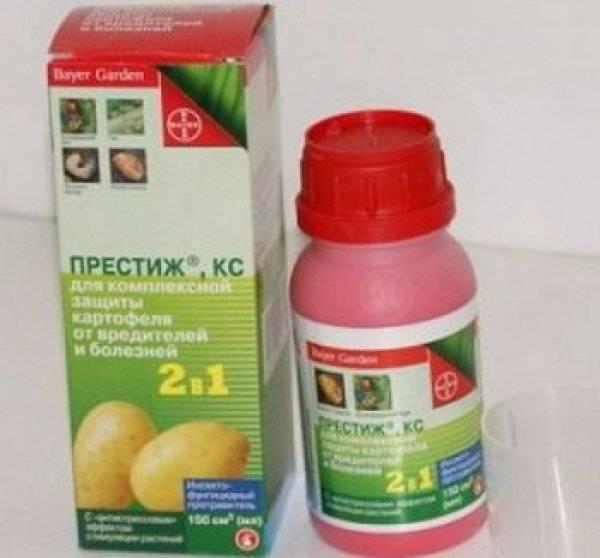 Средство от колорадского жука и болезней — препарат престиж