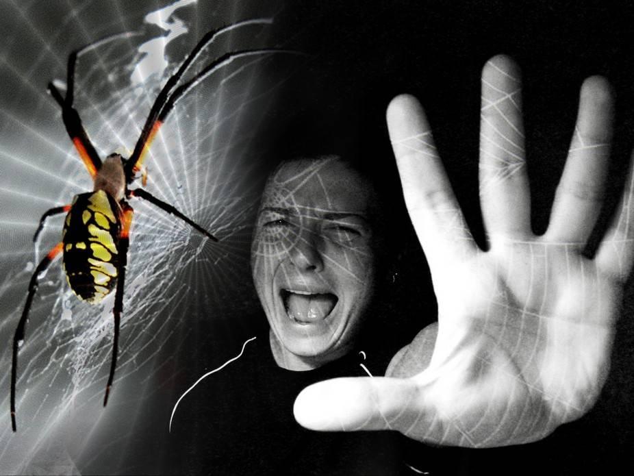 Арахнофобия (боязнь пауков) - лечение, причины, симптомы