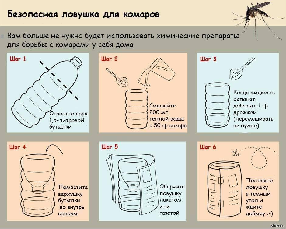 Самодельная ловушка для комаров - пошаговая инструкция по изготовлению разных видов изделия
