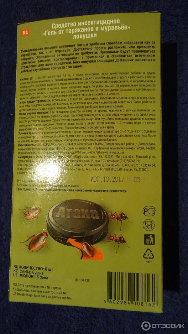Народные средства выведения тараканов навсегда