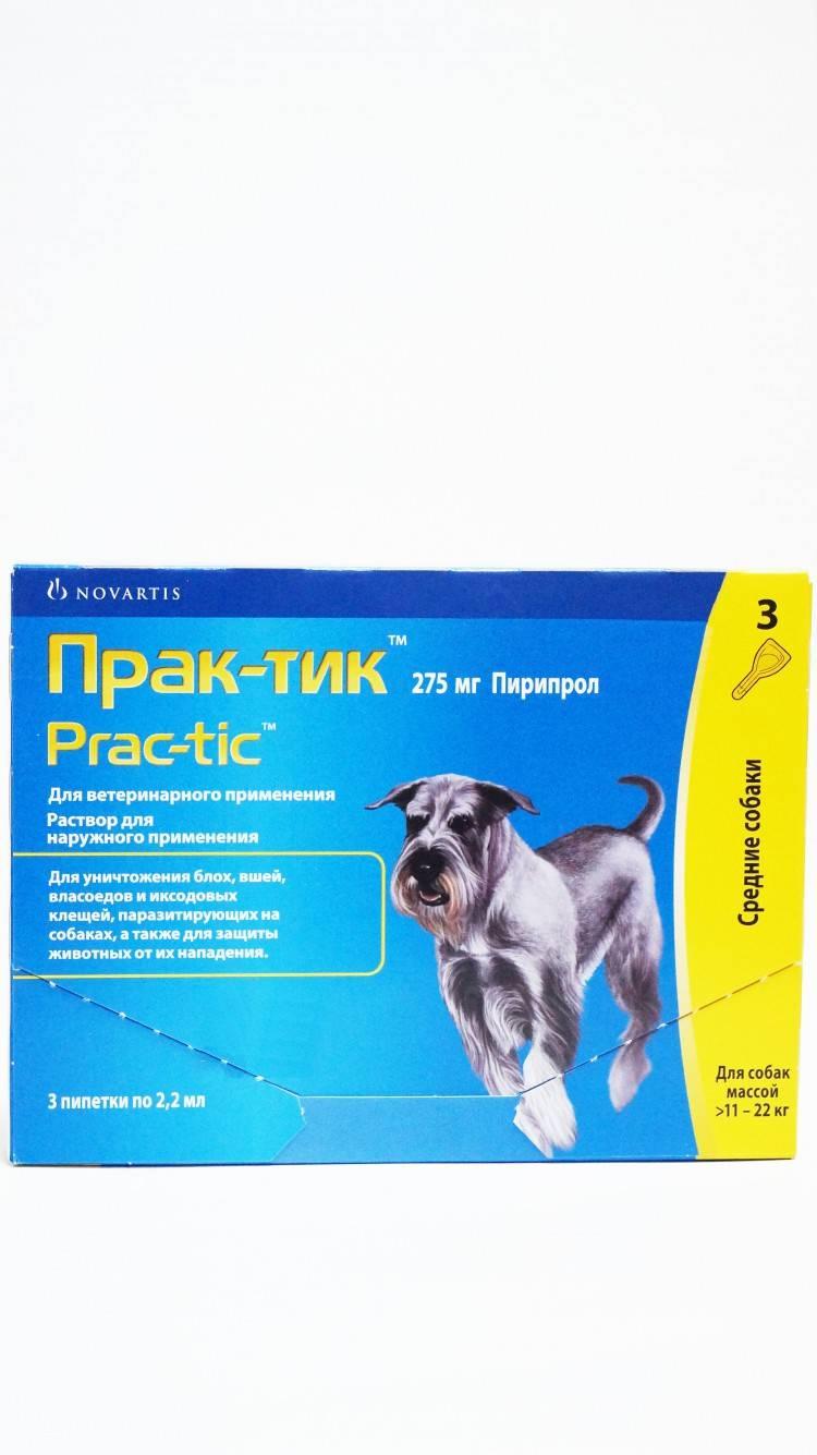 Инструкция по применению капель практик для собак