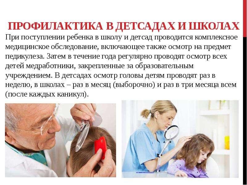 Санпин по педикулезу в детском саду новый - врач богданов