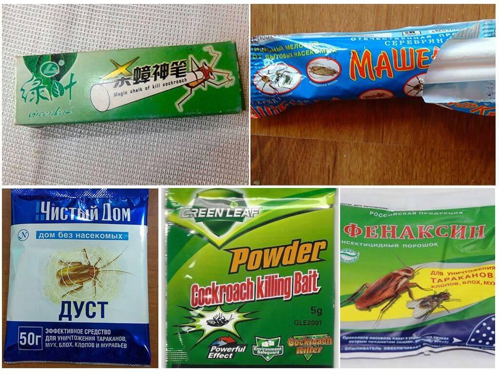Эффективные порошки от тараканов, виды и описание
