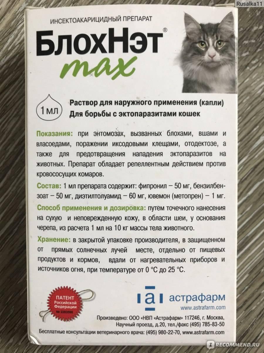 «блохнэт» для кошек: инструкция по применению, дозировка, показания и противопоказания, отзывы