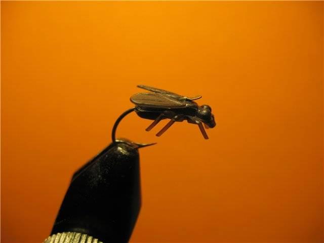 Как избавиться от мух в доме и квартире навсегда самостоятельно