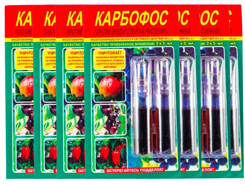 Карбофос от клопов: инструкция по применению в саду, отзывы