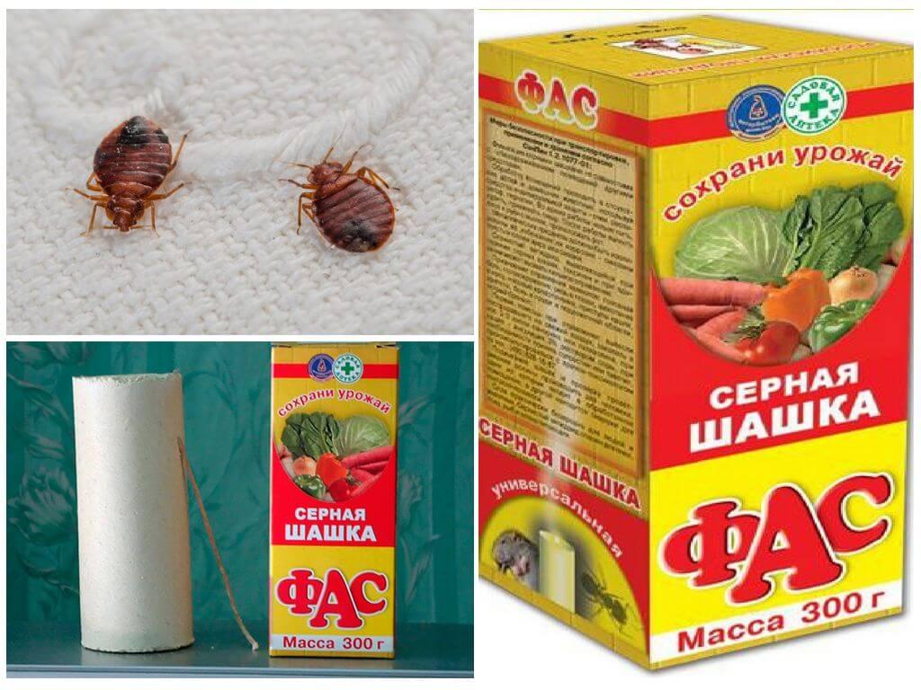 Дымовая шашка от клопов: для обработки в квартире от насекомых
