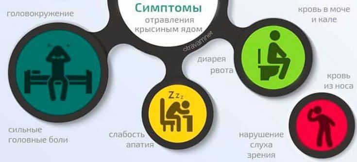 Отравление крысиным ядом: смертельный яд для человека отравление.ру отравление крысиным ядом: смертельный яд для человека