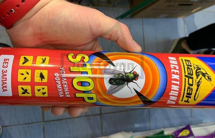 Что не любят мухи: репеллентные растения, эфирные масла и биологические враги насекомых