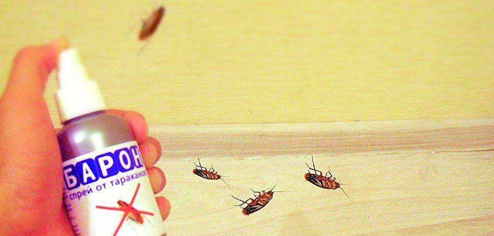 Средство от тараканов барон недорог и безопасен