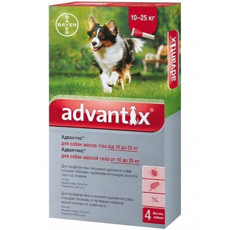 Адвантикс для собак: инструкция, применение, отзывы
