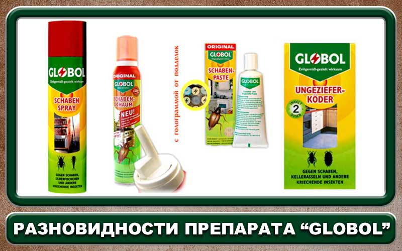 Глобал средство от тараканов: эффективный гель globol для уничтожения насекомых
