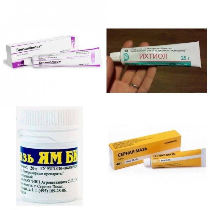 Мазь от демодекоза: лечение подкожного прыща аптечными и народными средствами