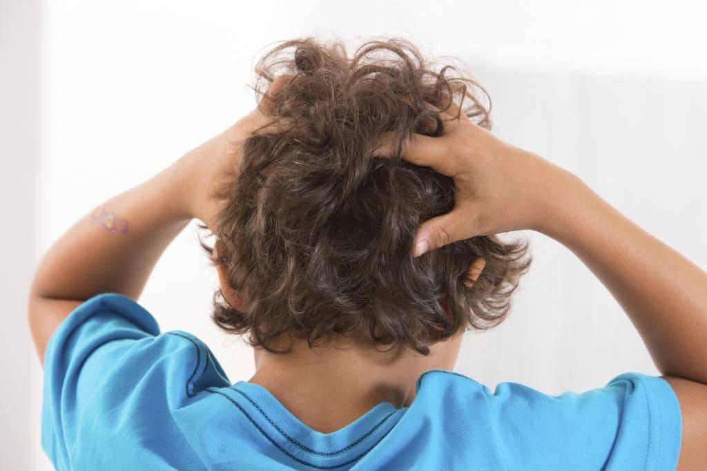 Признаки педикулеза (вшей) у взрослых и детей
