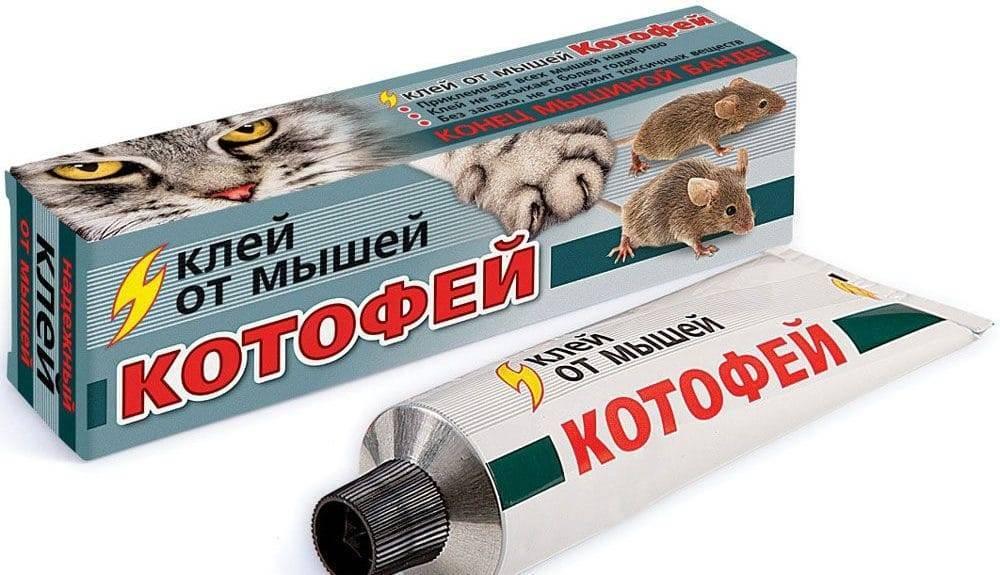 Чем лучше отмыть клей от мышей