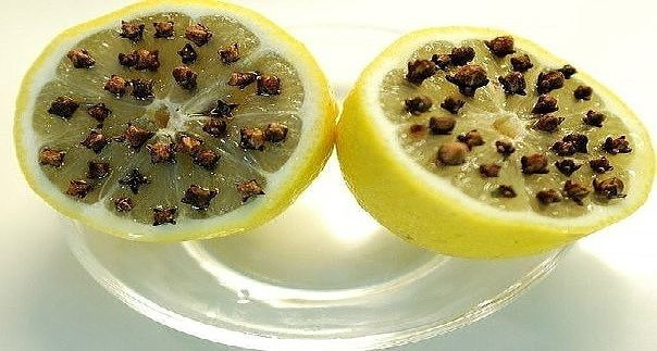 Лимон и гвоздика – отличное средство от комаров