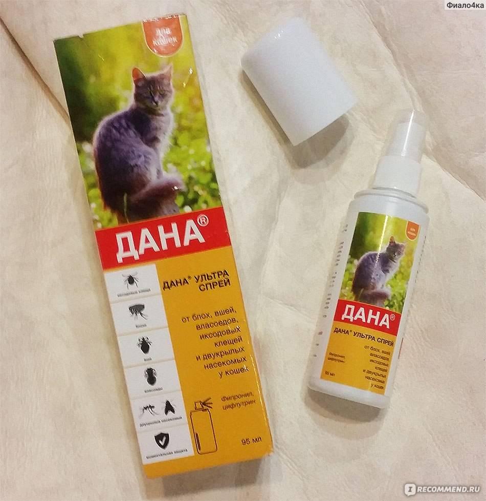 Бинакар - капли для кошек: инструкция по применению, отзывы, цена