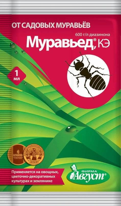 Эко-новинки для борьбы с тараканами и муравьями
