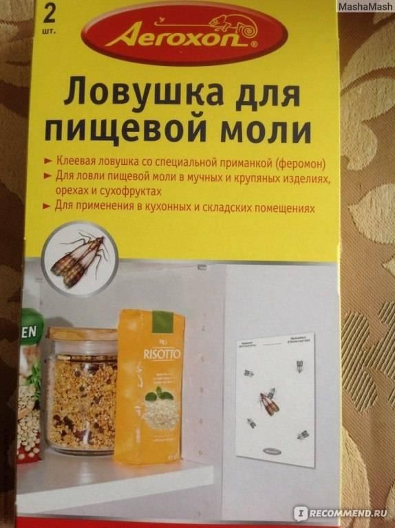 Пищевая моль: как избавиться и откуда берется, средства и способы борьбы с пищевой молью