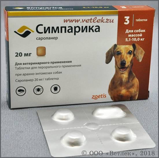 Таблетки от клещей для собак - инструкция по применению препаратов, побочные эффекты и отзывы