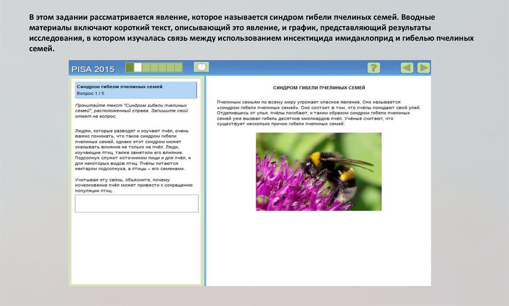 Хозяин пасеки рассказал мне о 6 простых вещах, которые мы можем сделать прямо сейчас, чтобы помочь спасти пчел от исчезновения