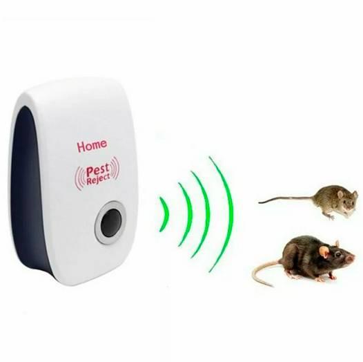 Какой отпугиватель крыс и мышей лучше: рейтинг устройств, особенности, как выбрать