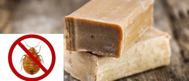 Дегтярное и хозяйственное мыло от клопов, сравнение эффективности