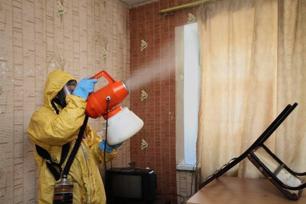 Как вывести пылевых клещей