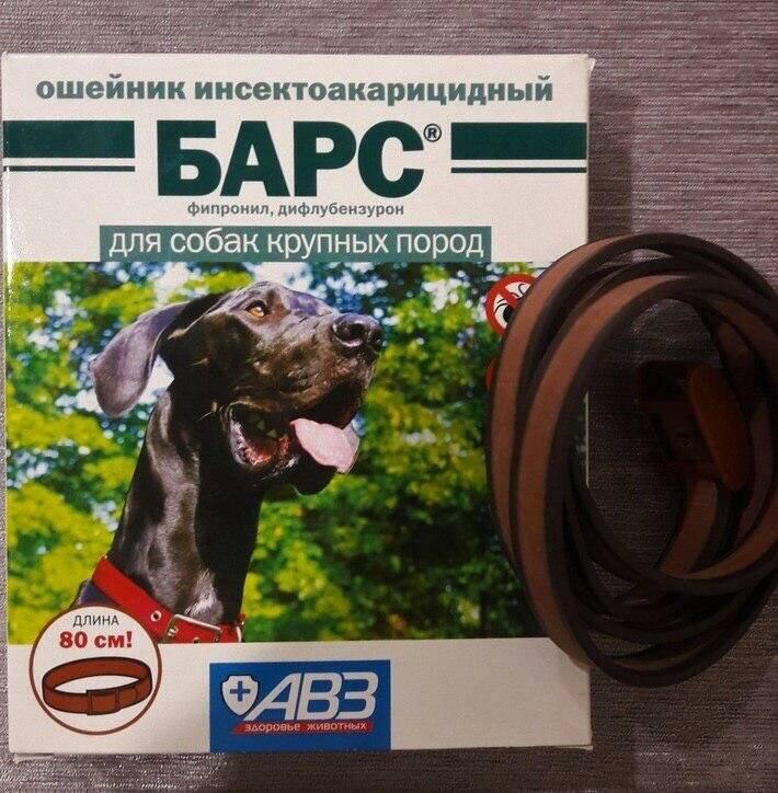 Барс для кошек от блох и клещей капли спрей ошейник препарат средство инструкция по применению барса в ветеринарии дозировка отзывы