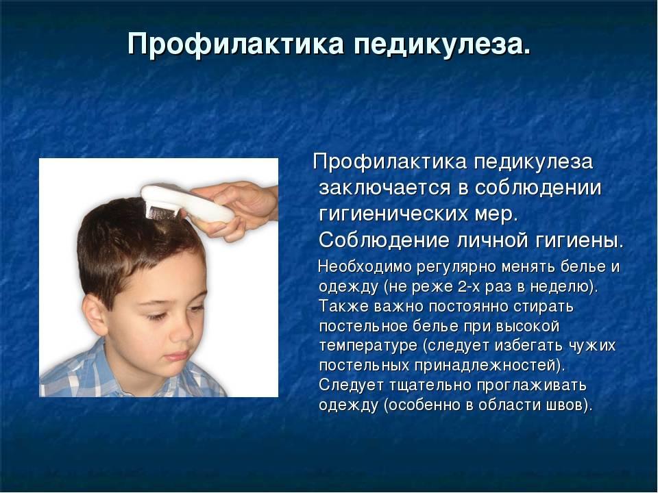 Профилактика педикулёза: как не допустить заражения вшами