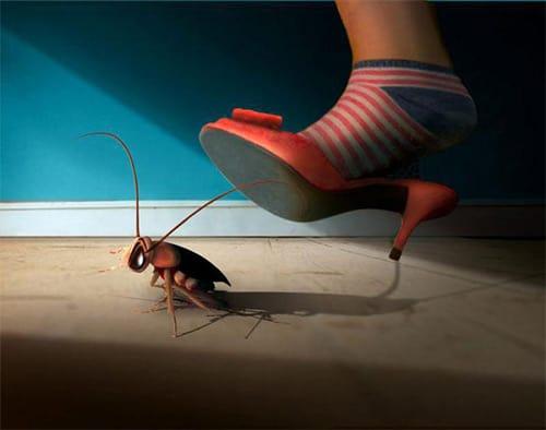 К чему снятся тараканы во сне женщине: что это значит, в квартире, на теле, маленькие, большие